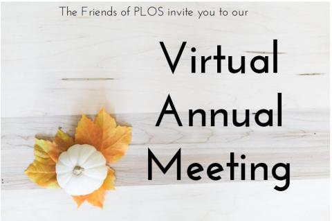 Welcome to our virtual meeting